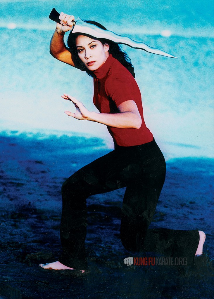 Diana Lee Inosanto Cover