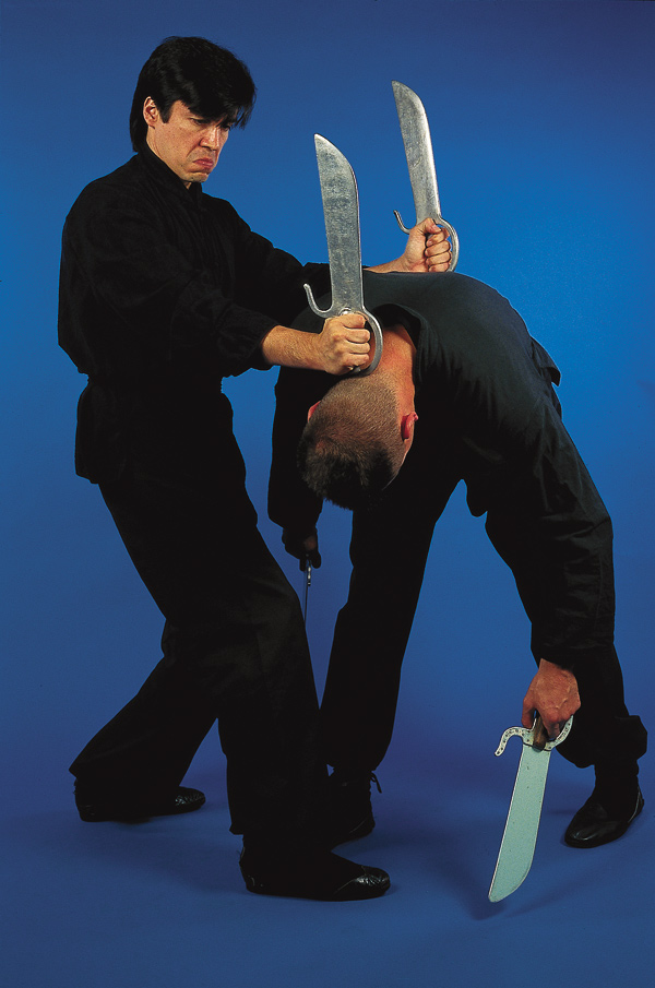 Partner Wing Chun